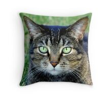Green Cat Eyes  Throw Pillow