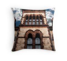 Reflections Of Higher Learning Throw Pillow