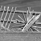 "Fence ""Wheel"" - Folkestone Cliff Top by Sunnymede"