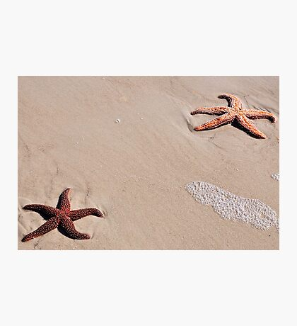 Star Power  Photographic Print