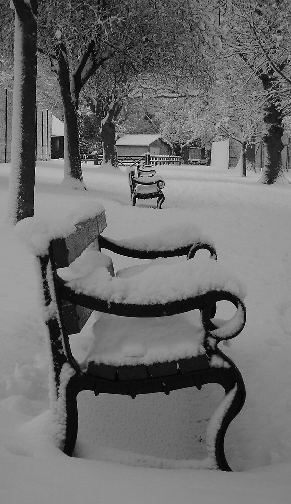 snowy benches by purpleminx