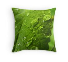 Raindrops on a leaf Throw Pillow