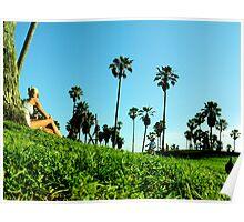 Venice Beach Green View Poster