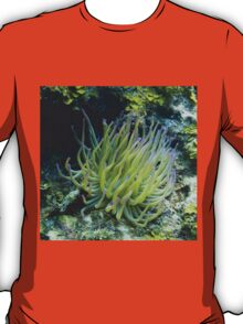 Pink Tipped Giant Sea Anemone T-Shirt