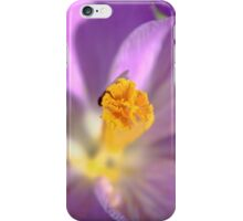 Spring - HDR iPhone Case/Skin