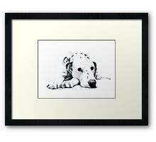 Misty Pups  Framed Print