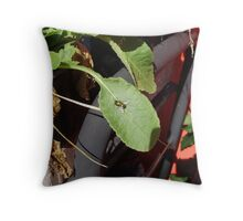 fly Throw Pillow