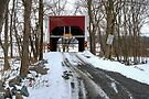 Through The Old Keefer Mill Covered Bridge by Gene Walls