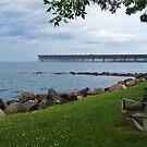 Ashland Ore Dock #2 by AuntieJ