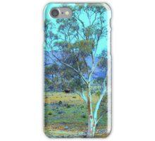 A breathtaking landscape iPhone Case/Skin