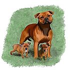 Staffy Momma & bubs ? by Cazzie Cathcart