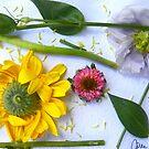 Botanical Collage 2 by Caren
