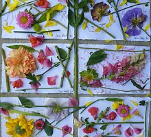 Botanical Collages by Caren