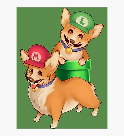Plumber Pups Photographic Print