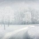 Magical morning by Angela King-Jones