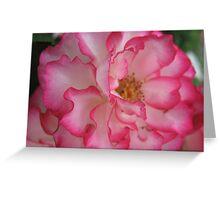 Pink Eye Liner Rose Greeting Card