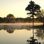 Morning Mist by Keith Stephens