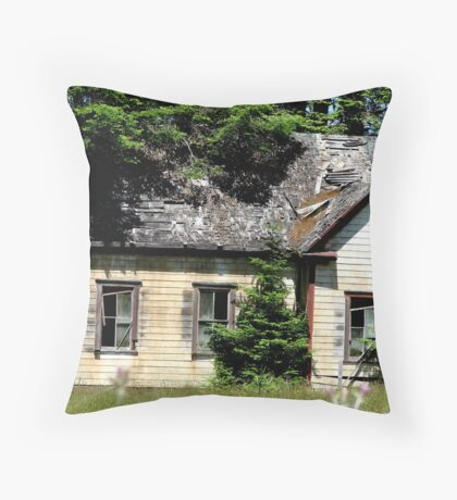 A Broken Home Throw Pillow