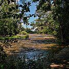 The Fox River Rising by EbelArt
