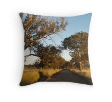 On The Road Again. Throw Pillow