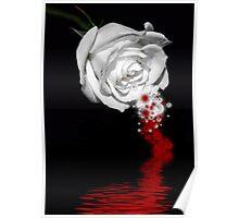 Bleeding Rose Poster