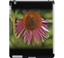 Spine Burst iPad Case/Skin