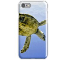 Caribbean Hawksbill Sea Turtle at Play iPhone Case/Skin