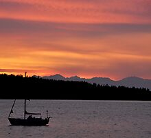 Another Sail Sunset C by Jerome Petteys