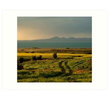 Bellarine Peninsula Art Print