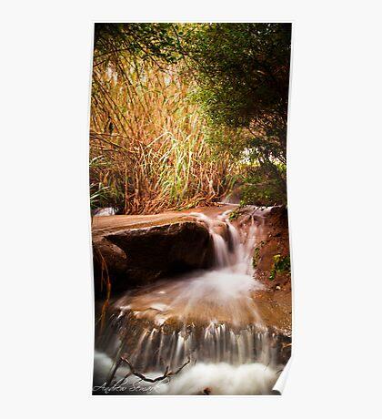 Lesmurdie Falls Poster