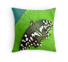 Spotted Butterfly Throw Pillow