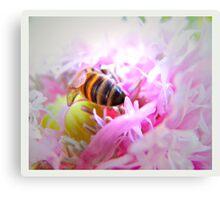 pollen drunk Canvas Print