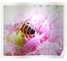 pollen drunk Poster