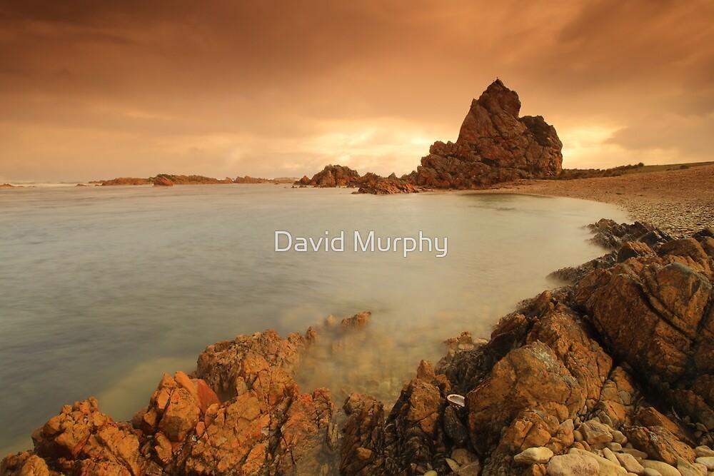 the Church....... by David Murphy