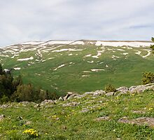 Panoramic view of the Lago-Naki plateau by Vanger