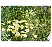 Glorious Garden Poster
