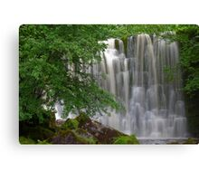Scale Haw Waterfall Canvas Print