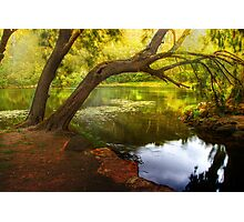 Bents Basin State Recreational Area, Greendale NSW Photographic Print