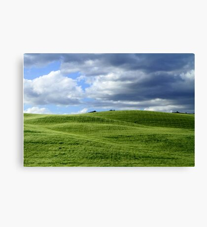Green hills in Tuscany Canvas Print