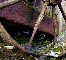 Rusty Wheel by David J Knight