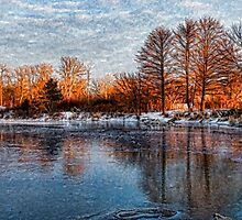 Cold Ice, Warm Light – Lake Ontario Impressions by Georgia Mizuleva