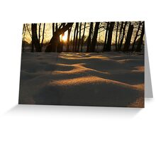 caught the last rays of the sun Greeting Card