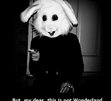 But, my dear, this is not Wonderland and you are not Alice. by princessbedelia