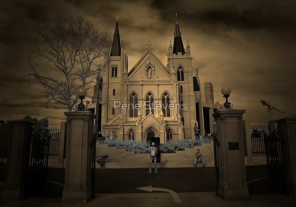 St Mary's Cathederal ~ Perth WA by Pene Stevens
