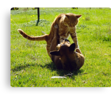 The Amazing and Funny Acrobatic Duo! Canvas Print