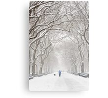 Winter in Central Park Canvas Print