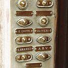 Doorbells by Alison Howson