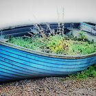 Boat Garden by Karen Martin IPA