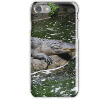 Gator Day iPhone Case/Skin