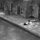 shoting on the quayside by fabio piretti